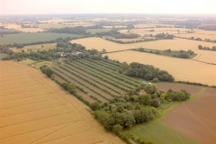 Wakelyns from the air